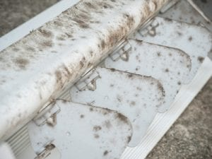 mold in system air conditioner