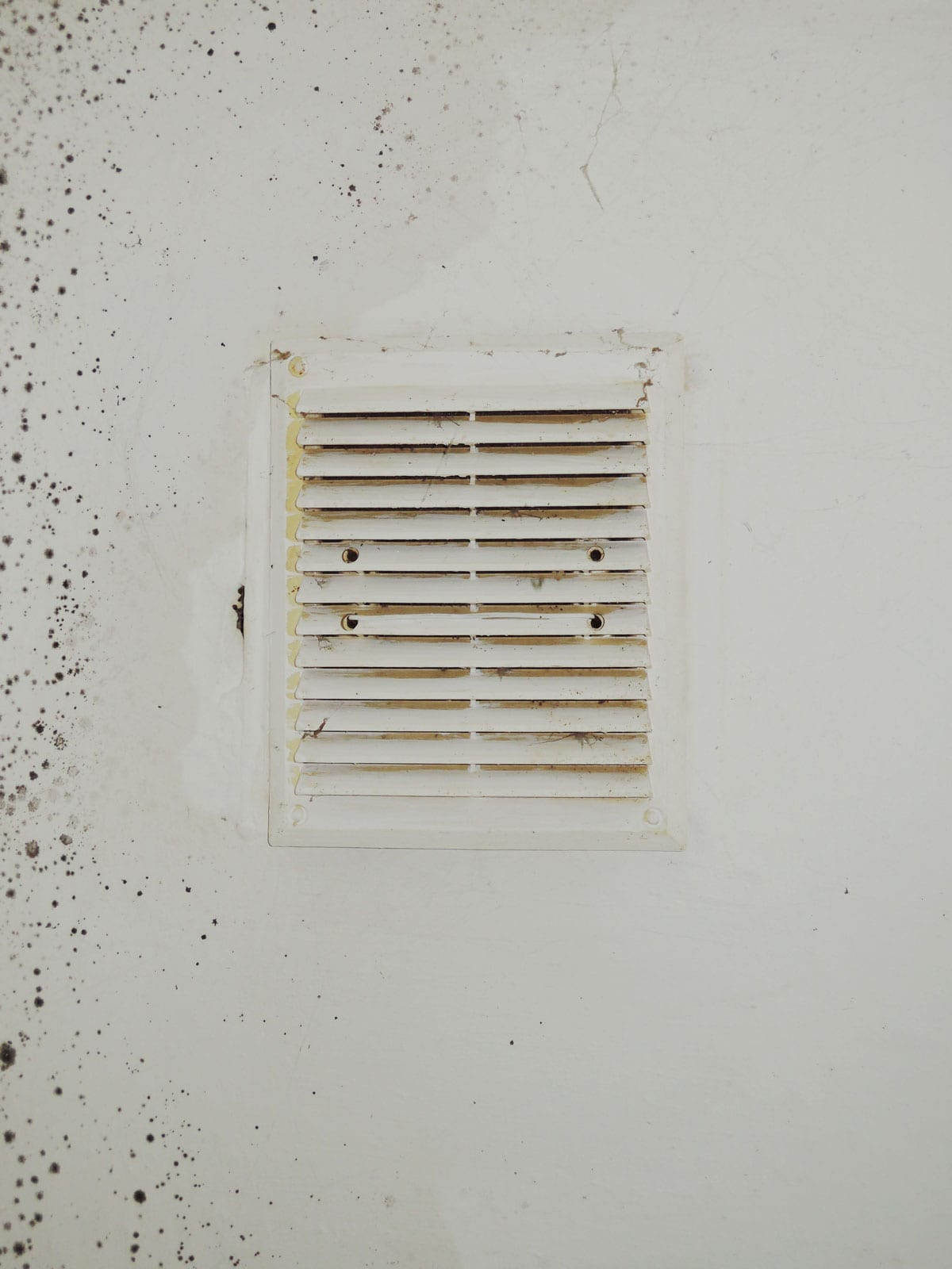 mold in your air ducts
